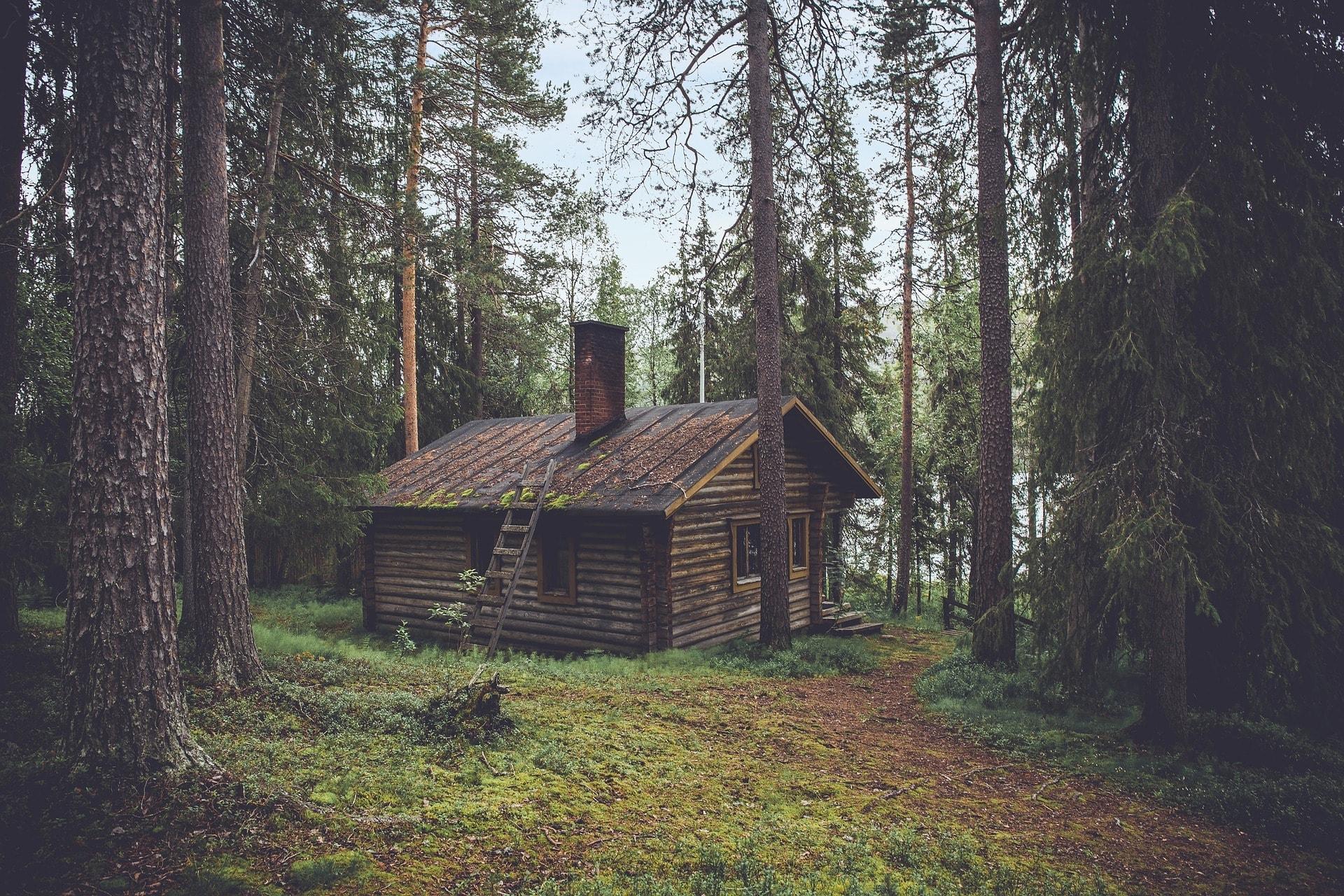 アメリカでの寮生活と一人暮らしのメリットを比較してみた!
