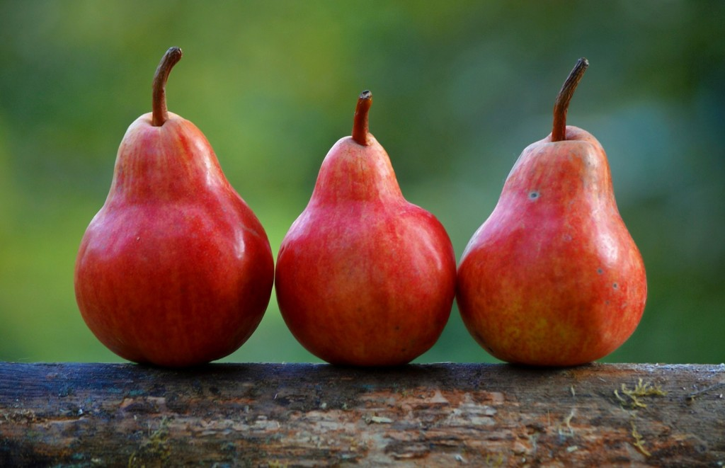 pears-1159014_1920-min